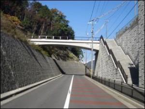 写真は寺山公園の歩道橋