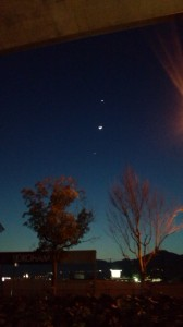 54号から夜空を見上げるときれいに見えました。