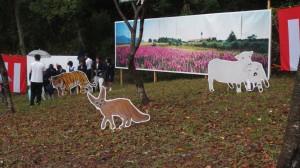 亀山中学校の校門前にできた「ほのぼの動物園」